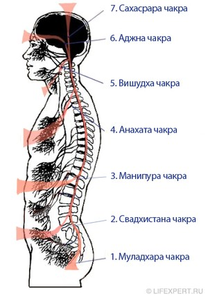 Расположение чакр на теле