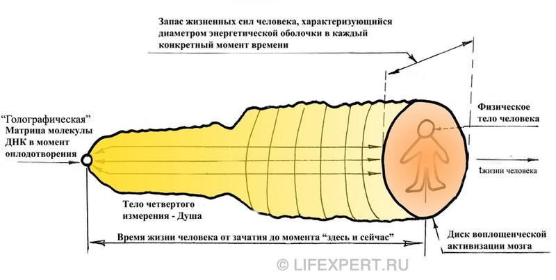 Структура души человека