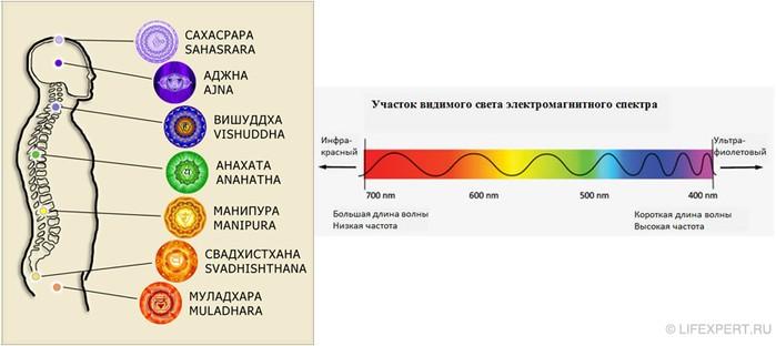 Описание чакр в соответствии с моделью энерго-информационного спектра частот