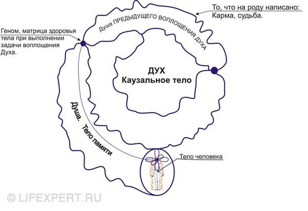 http://www.lifexpert.ru/media/cache/e5/d6/e5d6e8e9a5b8f95fb5329aa397a8068a.jpg